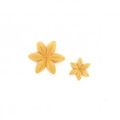 Fleurs Ambre