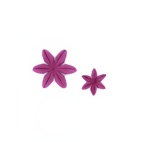 Fleurs Azalée