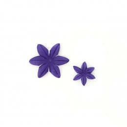 Fleurs Améthyste