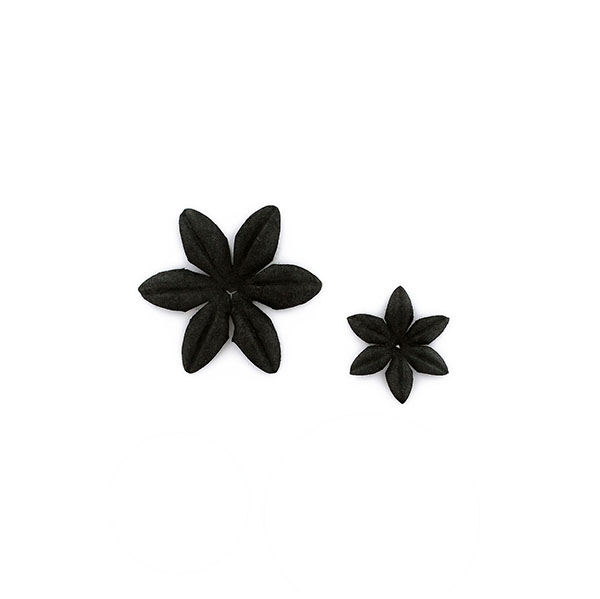 Fleurs Carbone