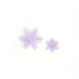 Fleurs Campanule