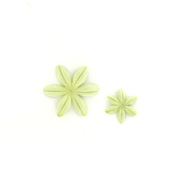 Fleurs Aloe vera