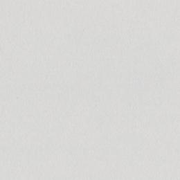 Papier uni 30,5 x 30,5 cm Bazzill DATE SWIRL par Bazzill Basics Paper. Scrapbooking et loisirs créatifs. Livraison rapide et ...