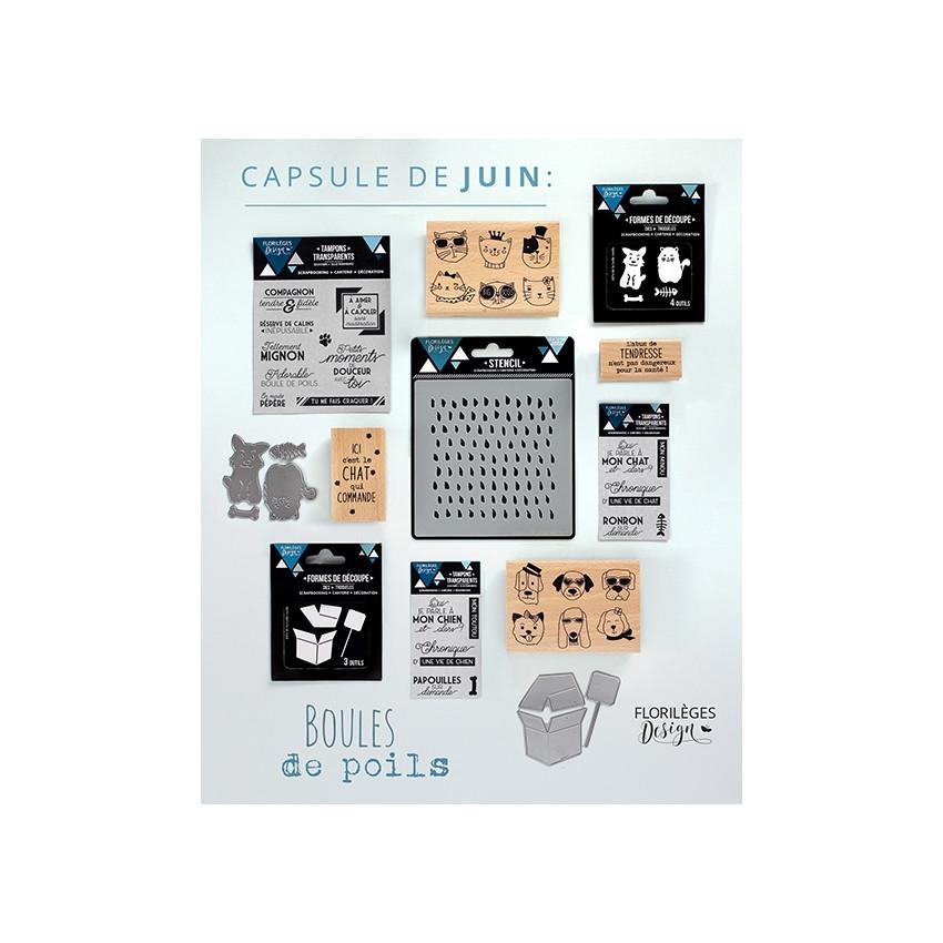 Pack complet capsule de Juin 2017