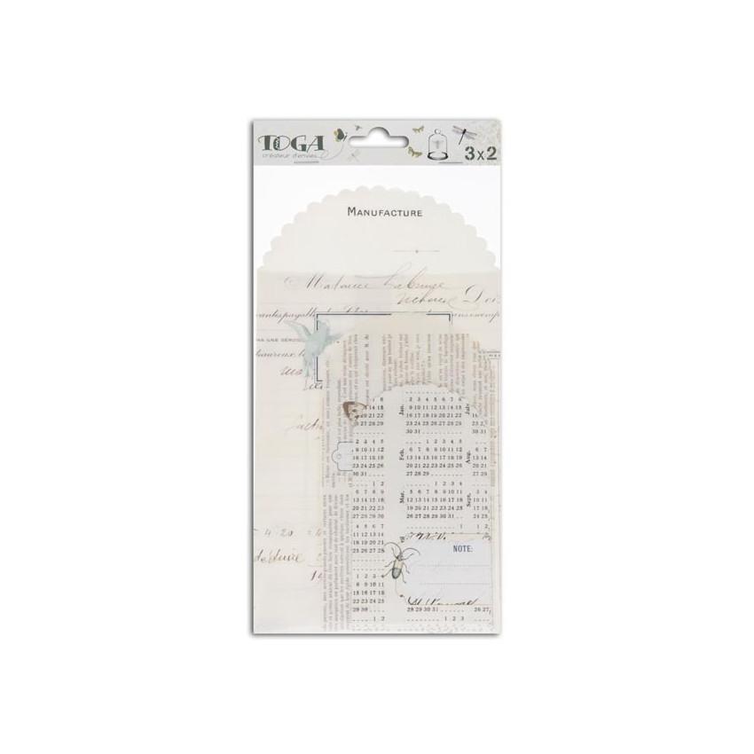 Assortiment de 6 pochettes imprimées CABINET DE CURIOSITÉS