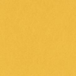 Papier uni 25 feuilles BANANA SPLIT par Bazzill Basics Paper. Scrapbooking et loisirs créatifs. Livraison rapide et cadeau da...