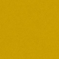 Papier uni 25 feuilles AMBER par Bazzill Basics Paper. Scrapbooking et loisirs créatifs. Livraison rapide et cadeau dans chaq...