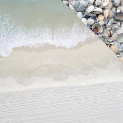 Papier imprimé Beach Shack COLLECTING