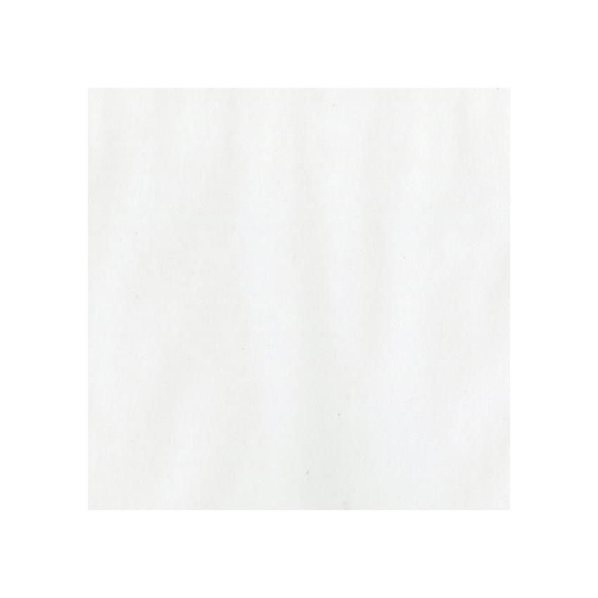 Papier calque blanc moyen (29 lb) 30,5 x 30,5 cm par Bazzill Basics Paper. Scrapbooking et loisirs créatifs. Livraison rapide...