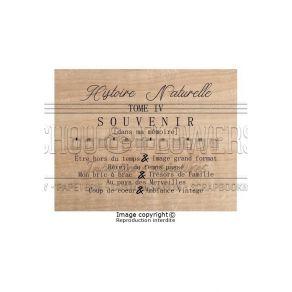 Tampon bois Esprit Brocante HISTOIRE NATURELLE