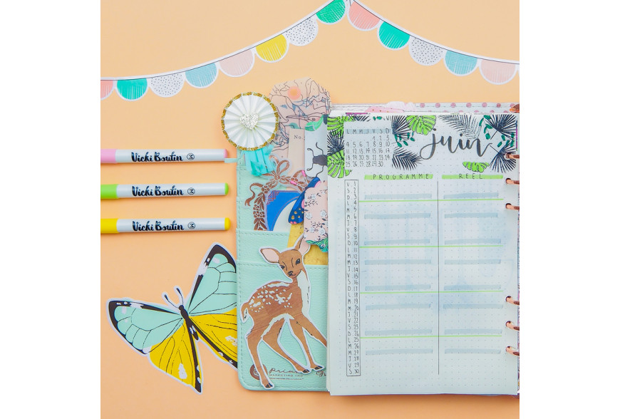 BULLET JOURNAL JUIN - LUCILE DE JOLIES CHOSES